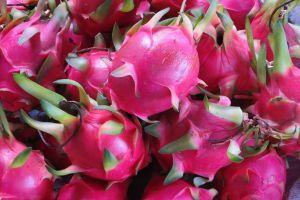 Los inigualables beneficios medicinales de la pitahaya