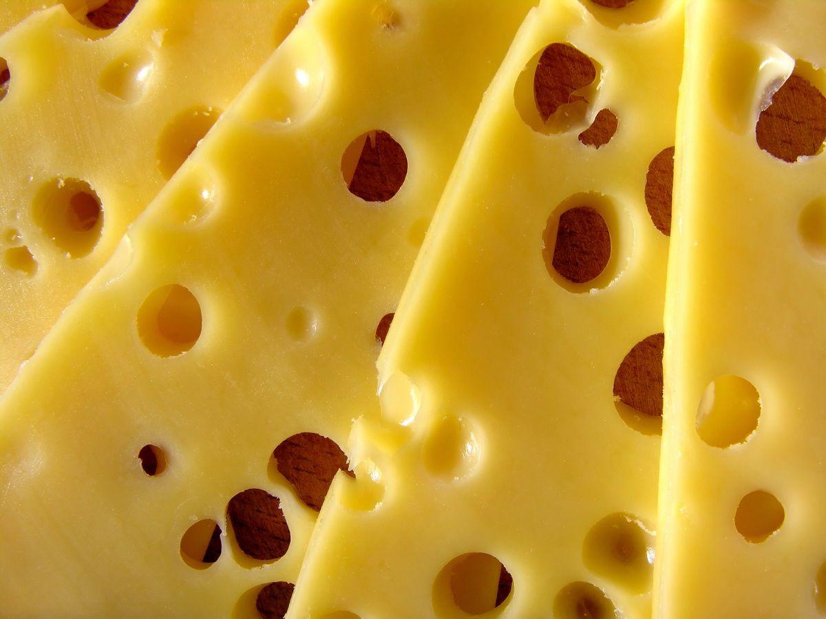 ¿Sabes por qué el queso suizo tiene agujeros?