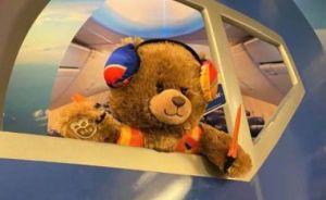 Tras informe que señala a aerolínea Southwest por negligencia en vuelos, oso Jack da la milla extra por la compañía