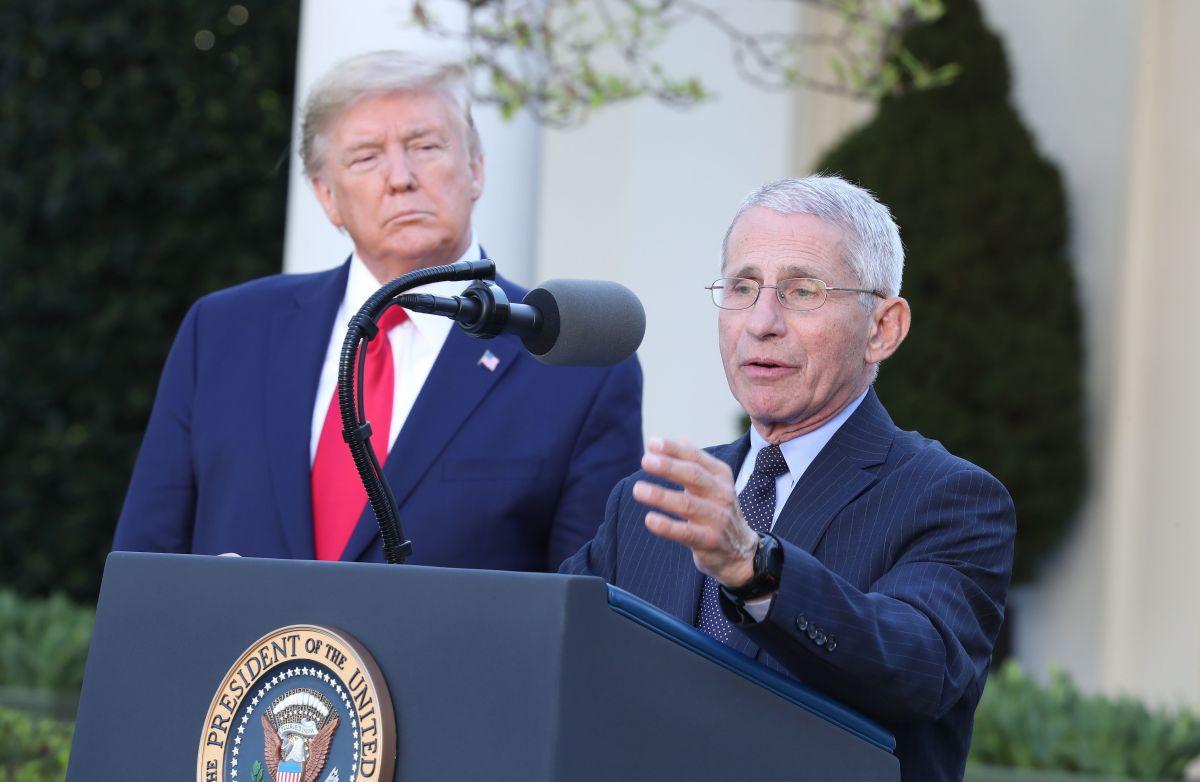 "Trump incontrolable: llama ""idiota"" al Dr. Fauci al igual que a científicos que luchan contra coronavirus"