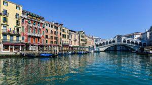 ¡Venecia más limpia que nunca! Se aprecian delfines y otros animales gracias al coronavirus