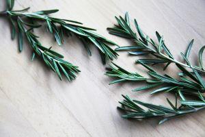 Las maravillas del té de romero para mejorar la salud
