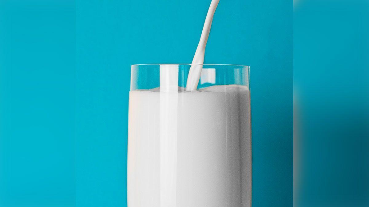 Empresa está creando leche a base de plantas que sabe como la de vaca