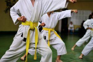 ¿Qué alimentación debo seguir si practico artes marciales?