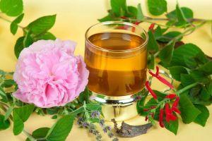 Un tesoro de la herbolaria: El malvavisco y sus bondades medicinales