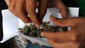 Detienen a dos sujetos con drogas en Quintana Roo