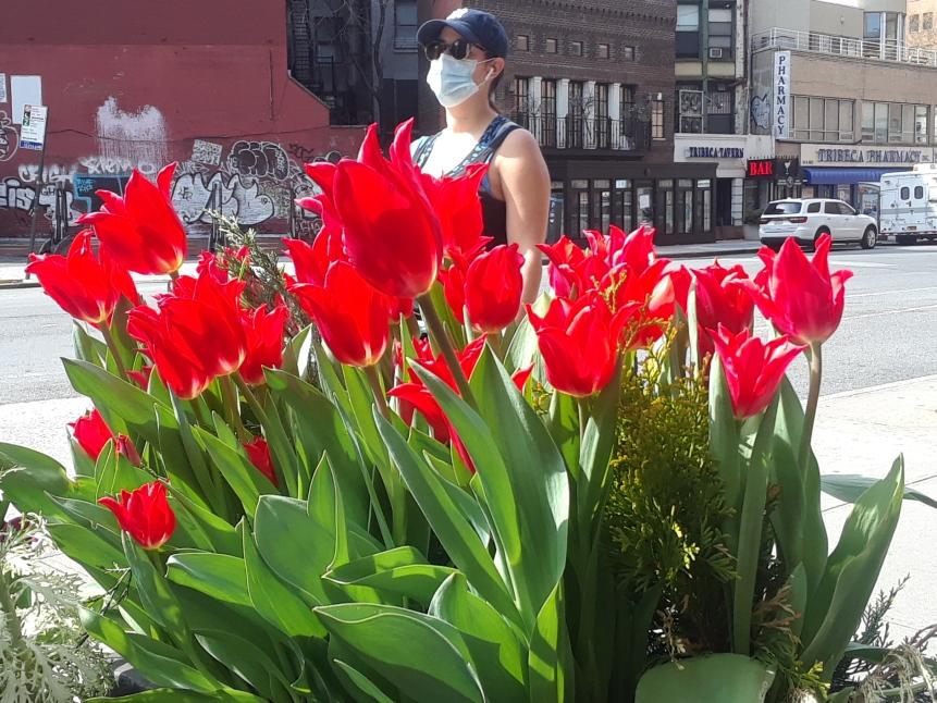 Luz en el túnel: bajan muertes y hospitalizaciones por coronavirus en Nueva York