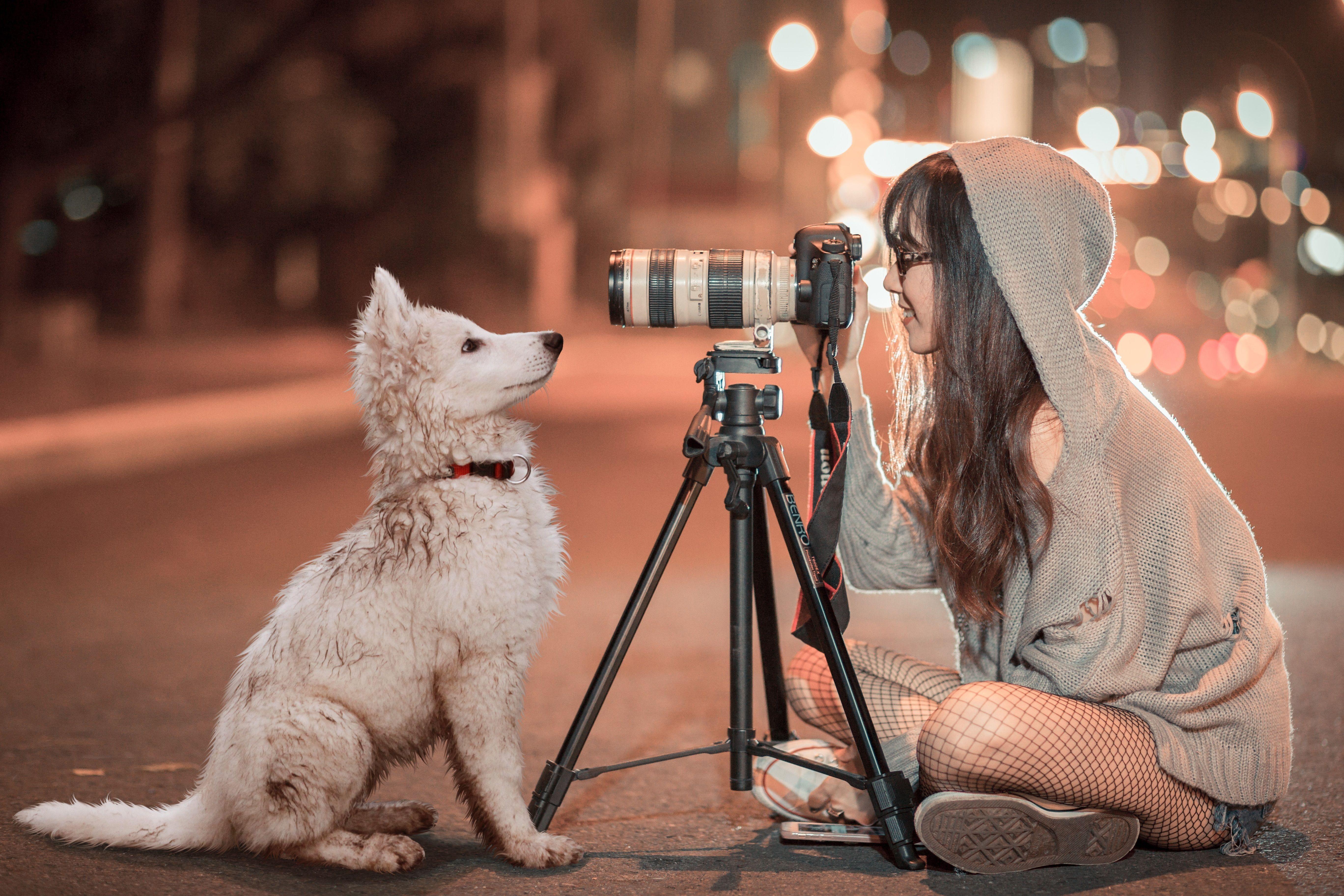 6 tips para lograr fotos profesionales de tus mascotas 5