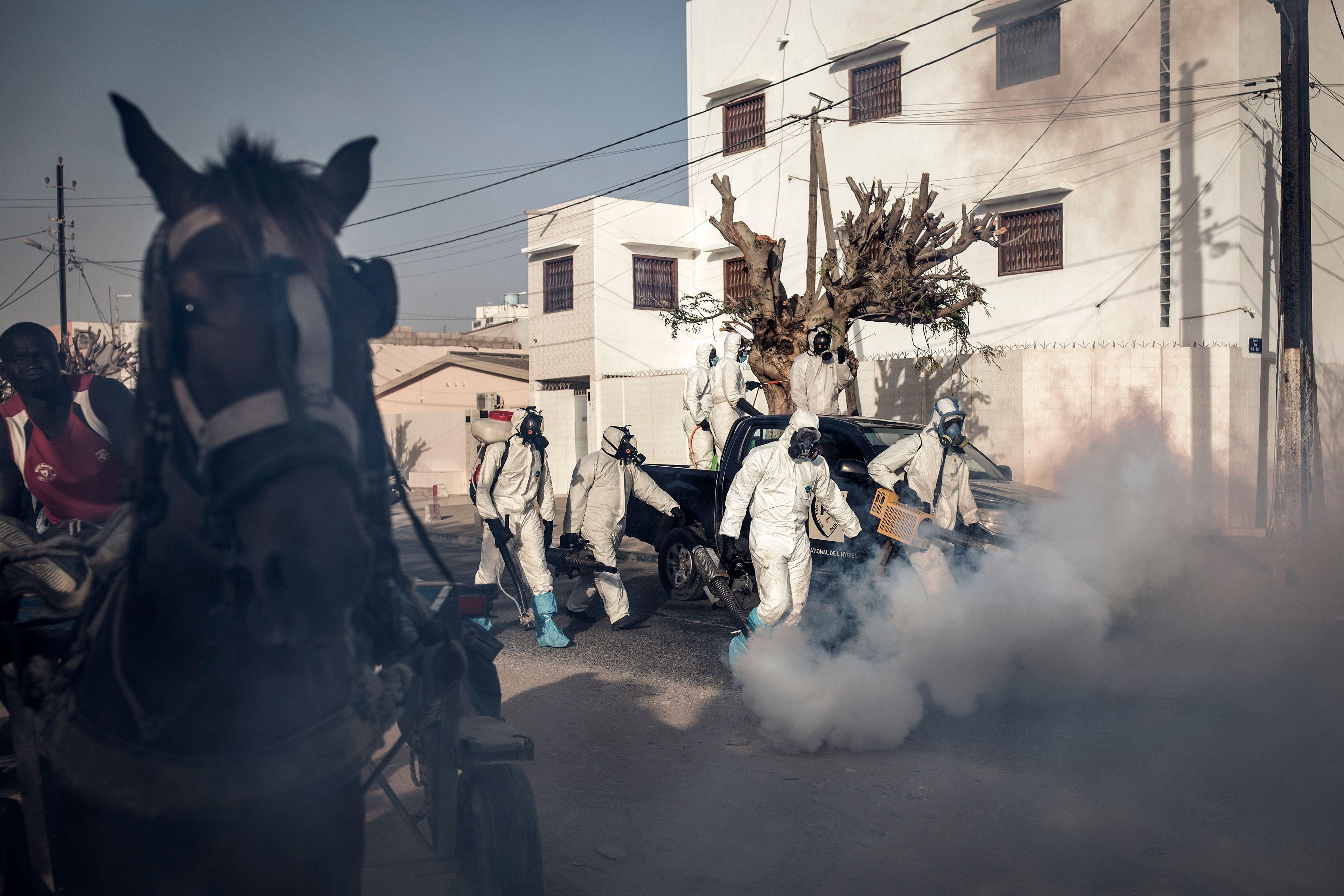 Trabajadores desinfectan calles en Dakar.