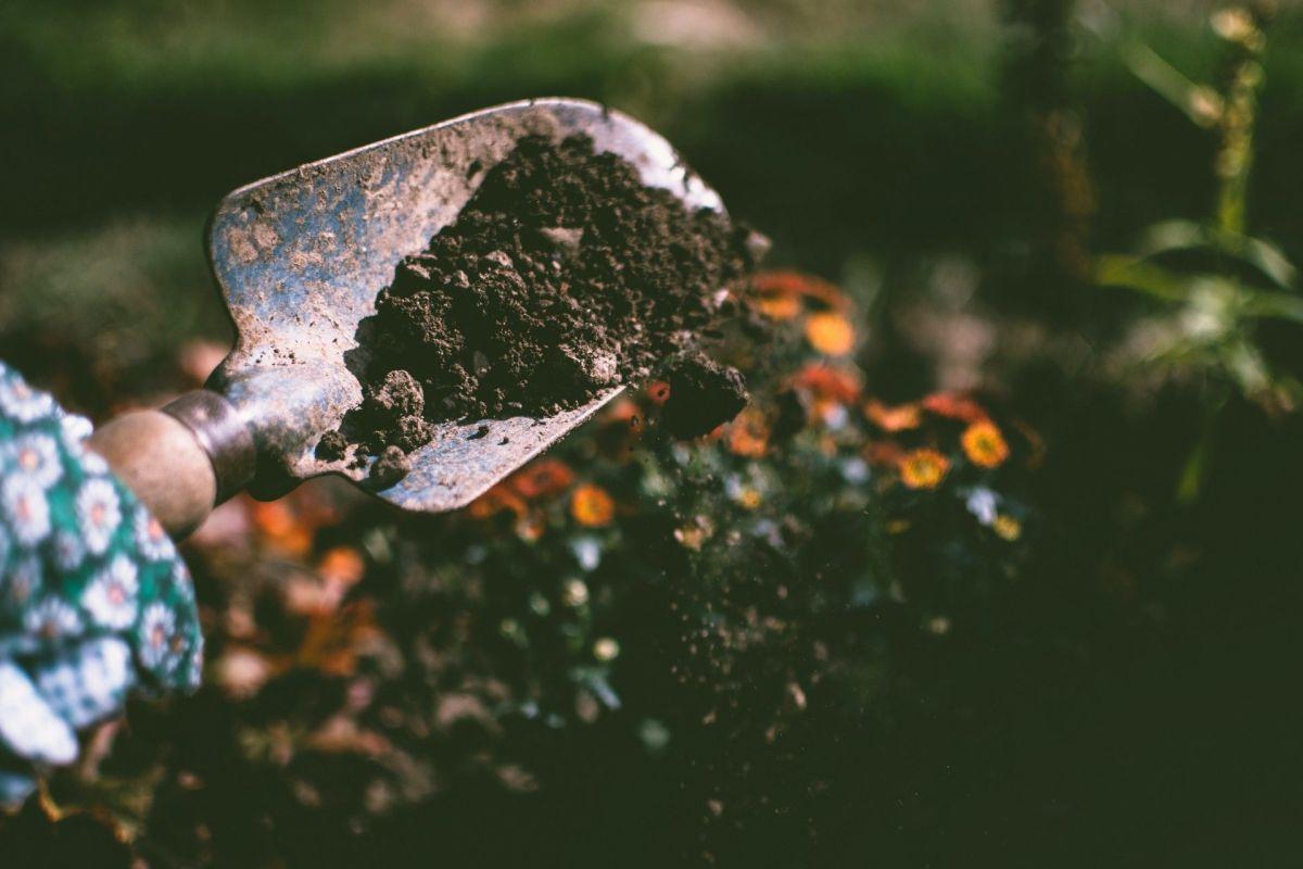 Manos a la obra: cómo organizar el patio de tu casa y hacerlo con toda la familia