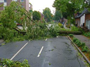 """Tornados en el sur de EEUU causan muertes y daños """"catastróficos"""". Se espera que continúen"""