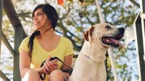 Gobierno de EE.UU. establece que solo perros de servicio podrán viajar con sus dueños en aviones