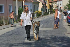 PETA pide a celebridades excluir animales silvestres de sus shows y videos