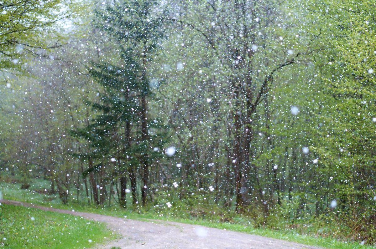 Tormenta invernal mantiene a residentes de SoCal con lluvia, viento y nieve