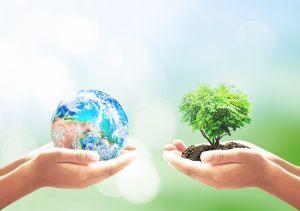 Únete a la celebración virtual del Día de la Tierra en Nueva York