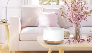 Los mejores inciensos y difusores de aceite para tener un ambiente de paz y relajación en tu casa