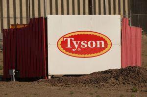 Casi 900 trabajadores de Tyson Food en Indiana dan positivo a COVID-19