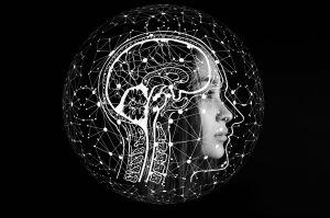 Ayahuasca: descubren que compuestos desencadenan creación de nuevas células cerebrales