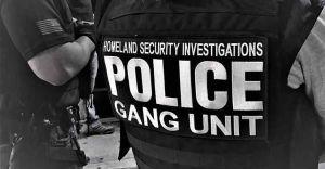 Denuncian que ICE convierte operativos de pandillas en redadas contra inmigrantes