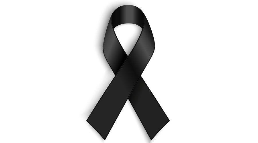 Cyberbullying e inhalación de gas: salen a la luz los detalles de la muerte de Hana Kimura