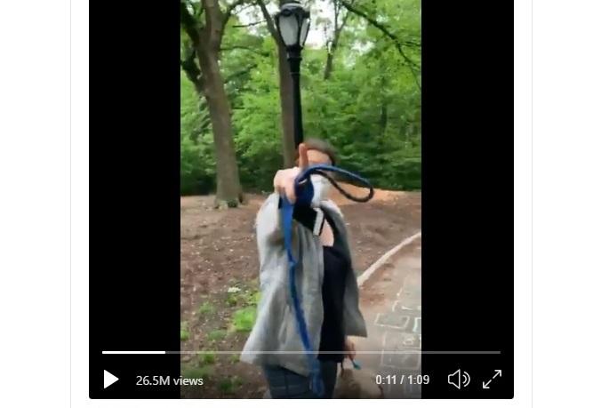 Acusada de racismo pierde empleo y mascota por ofender a un caminante en Central Park de Nueva York; piden vetarla de por vida