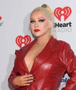 Christina Aguilera se lo quitó todo y alzó una bandera del orgullo gay