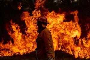 Incendio Bush en Arizona crece y ya es uno de los 10 mayores del estado