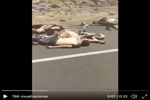 VIDEO: Los Chapitos regaron los cuerpos de 10 de sus víctimas cerca de frontera con EE.UU.