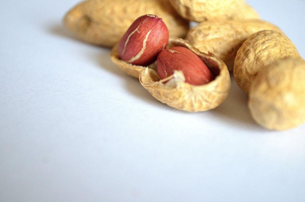Los cacahuates son un alimento saciante y de lenta absorción.