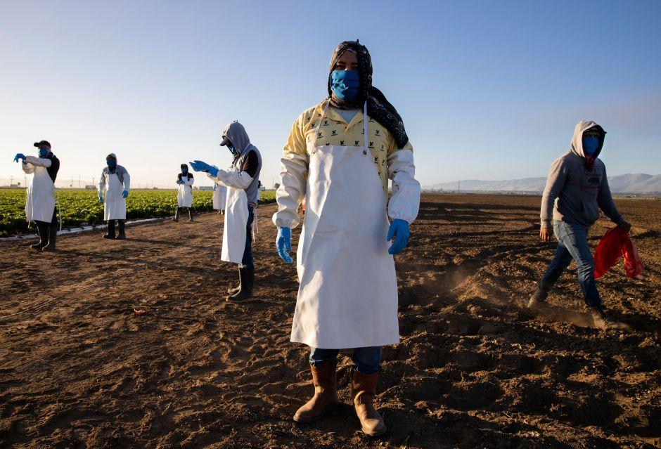La agricultura latinoamericana puede salvar al mundo