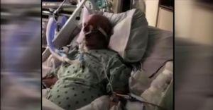 Lo daban por muerto: Un anciano de 83 años se recupera del coronavirus y regresa a casa tras 75 días en el hospital
