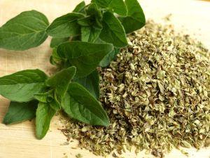 Beneficios medicinales de cocinar con orégano