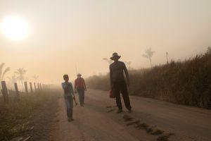 Brasil: Junio rompió récord de incendios forestales en la Amazonia