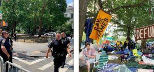 Fotos: Comparación del antes y después de lo que fue el campamento 'Occupy City Hall'