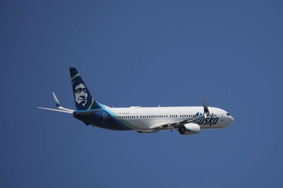 Avión de Alaska Airlines impacta a osa parda en pleno aterrizaje