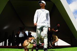 Lewis Hamilton podría estar dañando a su perro con una dieta vegana, advierte experta