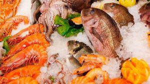 ¿Qué tan nutritivos son los mariscos?