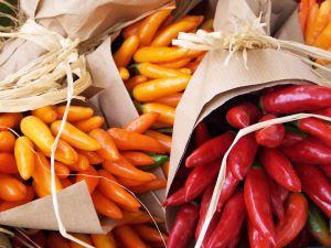 Cuáles son las bondades terapéuticas de las 5 superfoods en tendencia de origen mexicano