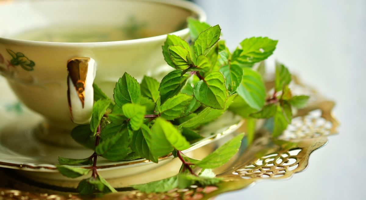 Peppermint tea to lose weight, improve digestion and eliminate everything you do not need