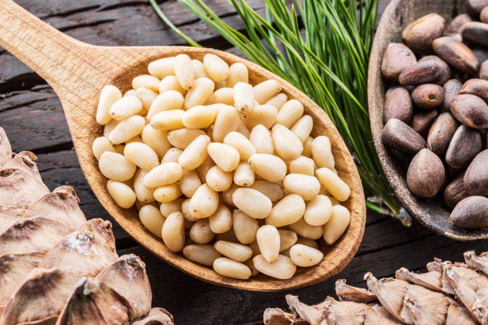 Los piñones son un ingrediente gourmet muy valorado en la gastronomía internacional.