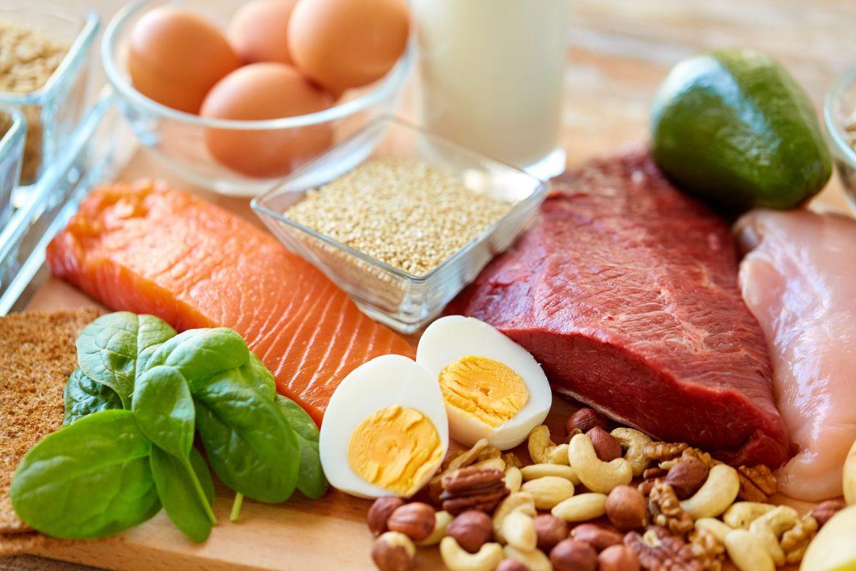 ¿Qué diferencia hay entre comer proteínas de origen vegetal o animal?