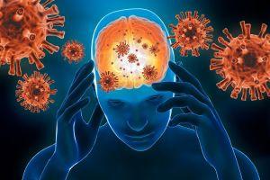 La ola que viene: Cómo el coronavirus daña el cerebro
