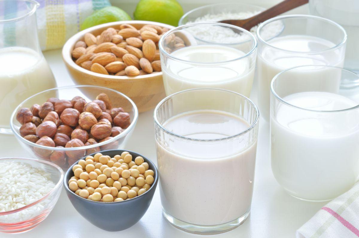 Dieta basada en plantas: qué bebida vegetal tiene más beneficios nutricionales en reemplazo de la leche de vaca