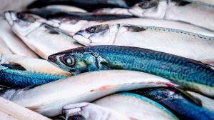 En Estados Unidos, aumenta el consumo de pescados y mariscos a medida que la carne se vuelve más cara