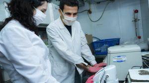 Las vacunas para el covid-19 que se están desarrollando en América Latina (además de la de AstraZeneca-Oxford)