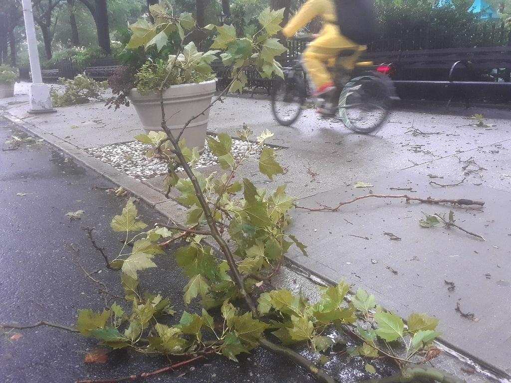Un electrocutado por tormenta Isaías en NJ; miles sin luz hasta el domingo en Nueva York