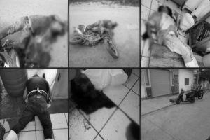 FOTOS: Matan a carniceros a balazos, sumarían al menos 65 asesinatos tras captura del Marro