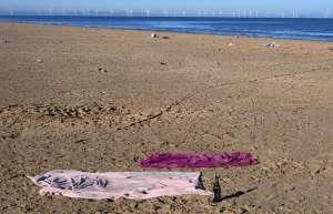 """Foto: Misteriosa criatura de 15 pies con """"aletas"""" y """"pelaje"""" llega arrastrada a orilla de playa británica"""
