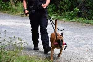 Investigan a policía de Salt Lake City que habría ordenado a su perro morder a detenido afroamericano