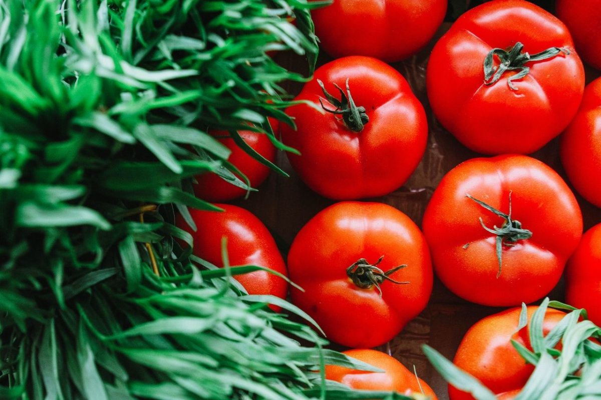 raw food-tomatoes
